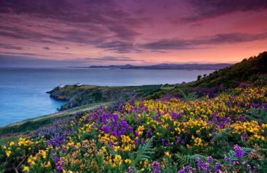 WEST IRELAND, 8 days